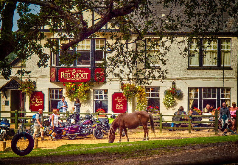 The Red Shoot pub in the New Forest. Credit Anguskirk, flickr
