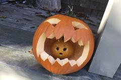 20171031 - Halloween 2017