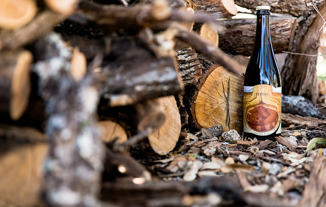 Jester King-9868