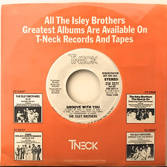 THE ISLEY BROTHERS:GROOVE WITH YOU(JACKET B)