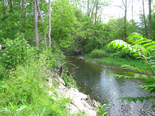 The Keuka Lake Outlet from the Keuka Outlet Trail near Penn Yan, New York
