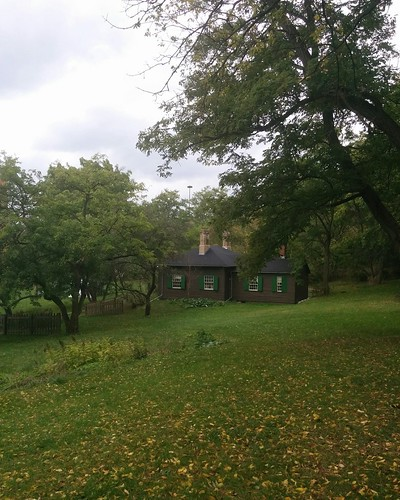 Cottage amid green #toronto #todmordenmills #donvalley #cottage #latergram