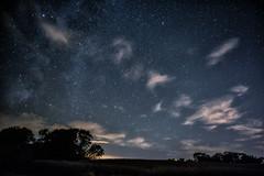 Stargaze in the Moonlight