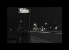 Nightstalking (Olympus OM2n, Ilford XP2)
