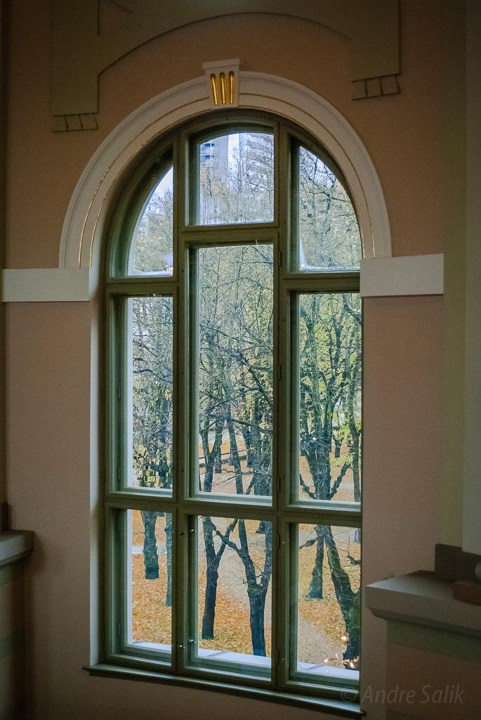 Great window  13:32:33 DSC_3390