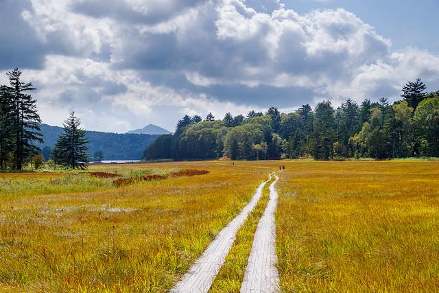 草紅葉の大江湿原を歩き尾瀬沼へ向かいます