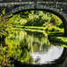 Canal Bridge Reflection