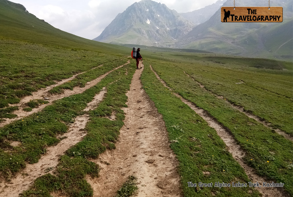 The Great Alpine Lakes Trek Kashmir | The Travelography