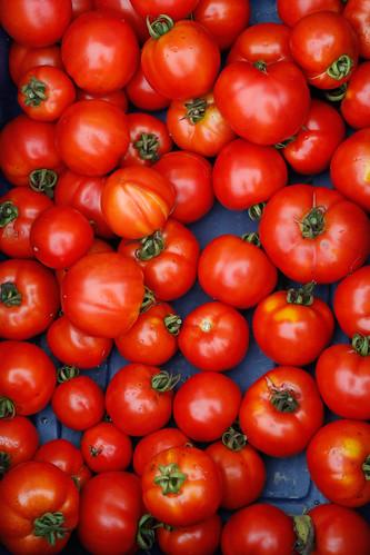 Agri 150 – Célébration de la bonne nourriture