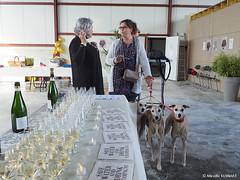 20171020 ChampagneDay Sacy-Damien-Buffet-36