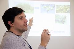 Quartas Tecnológicas: Práticas em análise sensorial de azeite de oliva