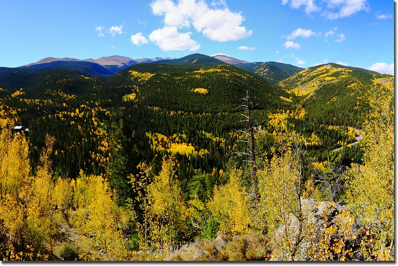 Fall colors, Mount Evans Scenic Byway, Colorado (1)