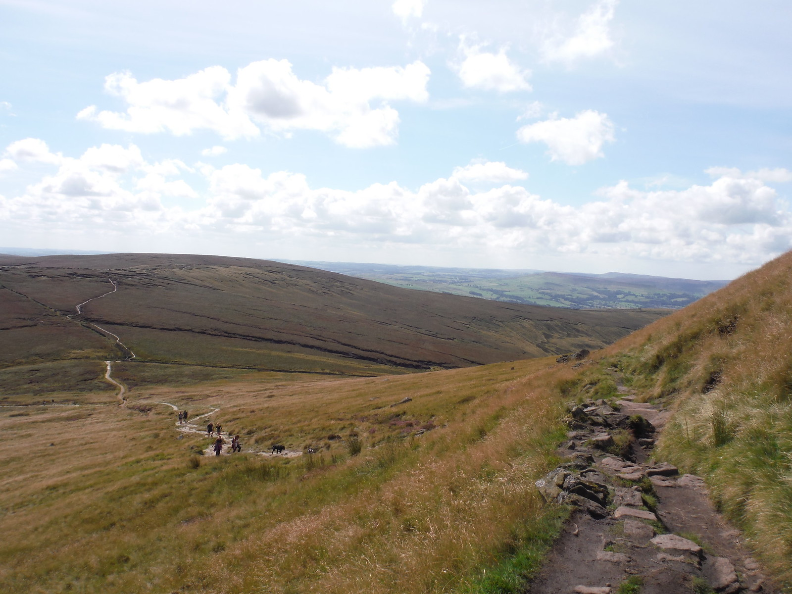Path from Brown Knoll to Swine's Back SWC Walk 303 - Edale Circular (via Kinder Scout and Mam Tor)