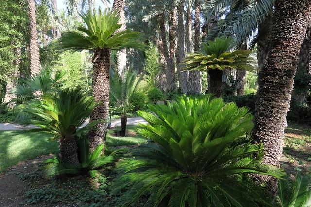 El Huerto del Cura Garden IMG_7511