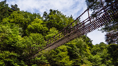 奥祖谷二十かずら橋-男橋