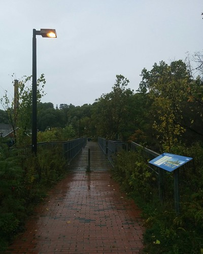 Bridge north #toronto #todmordenmills #donvalley #bridge #rain #latergram