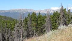 Segment 6, Colorado Trail, near Breckenridge, CO7