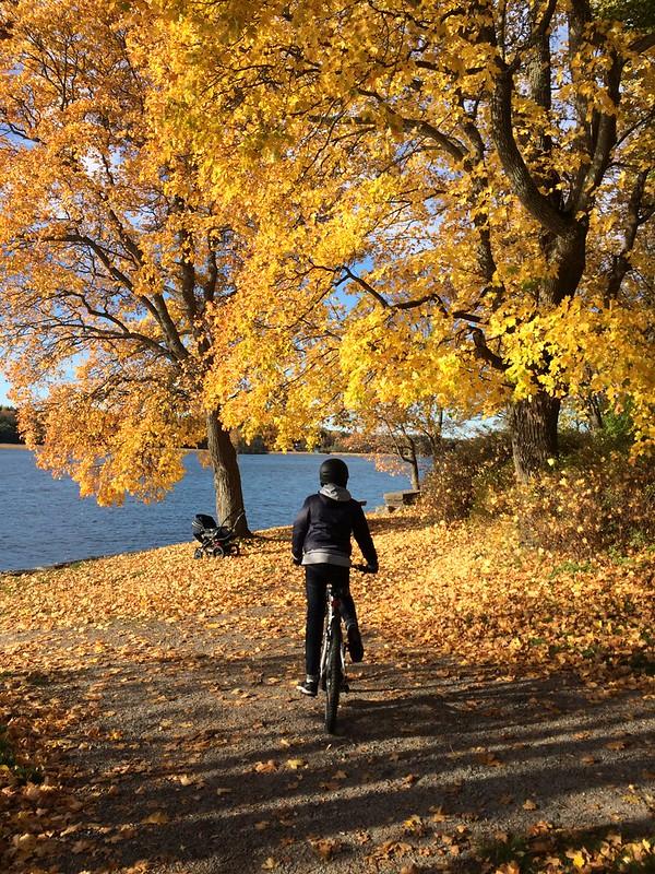 Cykeltur längst vattnet