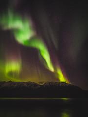 Aurora Borealis-220090