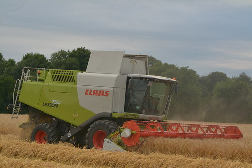 Claas Lexion 750 Combine Harvester cutting Winter Barley