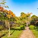 Autumn garden in Oxfordshire