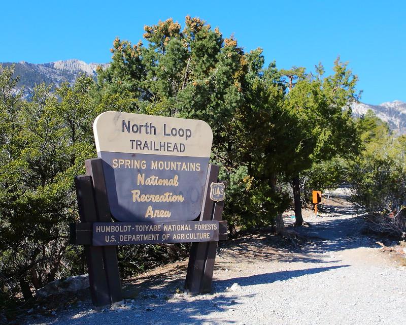 IMG_8043 North Loop Trail