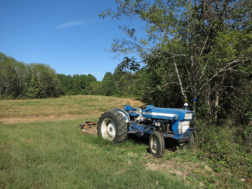 Ford Tractor in Second Meadow (4159)