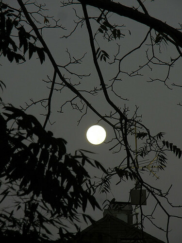 DSCN1015 - Full Moon, October 2017