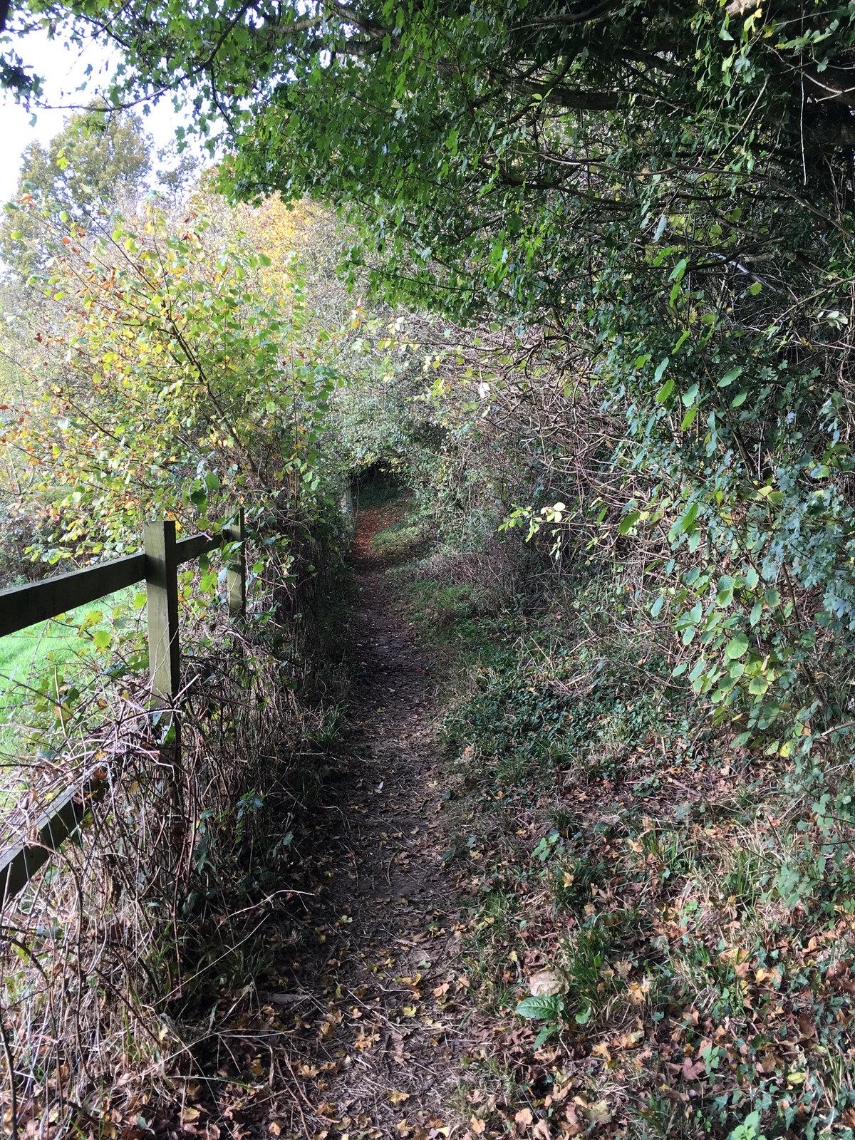 8 Ashurst Circular Walk