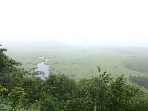 展望台、ガッスガスだが湿原を感じる。