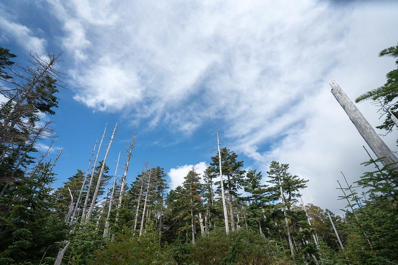20170924-塩見岳_0169.jpg