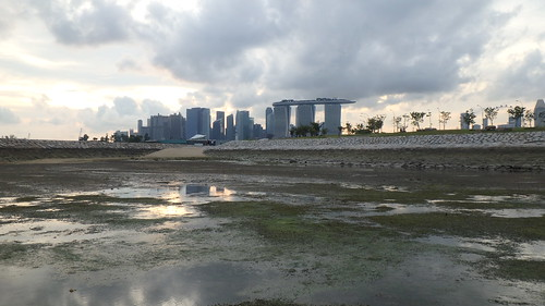 Marina East  shore off the Marina Barrage