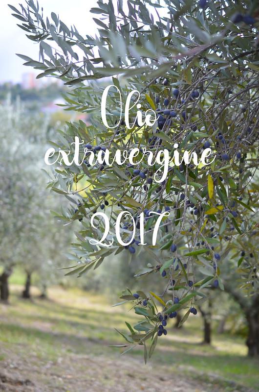 Olio extravergine 2017