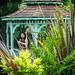 Bennetts Water Gardens - 09