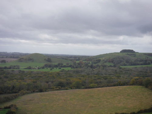 Brockman's Bushes and Summerhouse Hill in the distance
