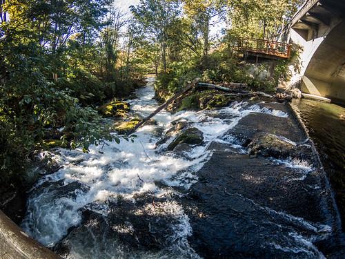 Whatcom Creek Falls and Maritime Park-002