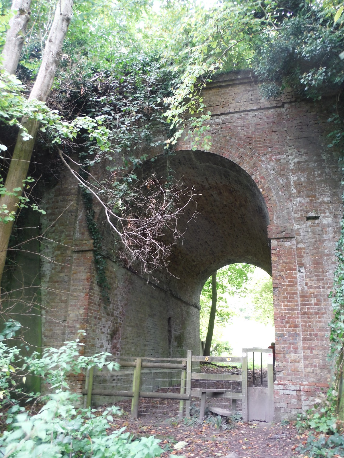 Under the Dismantled Railway Line, near Coombe Farm SWC Walk 93 - North Downs Way: Sandling to Folkestone or Dover
