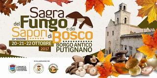Sagra Fungo 2017