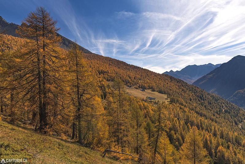 Fall - Simplon Pass