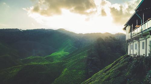 tanahrata pahang malaysia my sonya7ii sonyalpha sonnartfe2835 sony nature landscape sunset green
