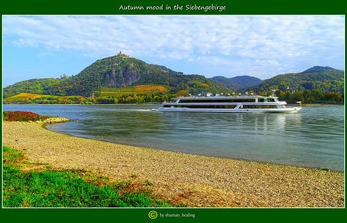 herbst autumn farben colors rhein rolandswerth landscape rheinland rheinlandpfalz deutschland germany