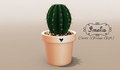 {Imeka} Cacti {Group Gift} {Vendor} flickr