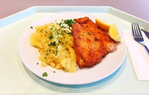 Baked plaice with remoulade & potato salad / Gebackene Scholle mit Remoulade & Kartoffelsalat