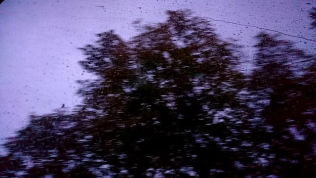 Regnvåta fönster på resan hem
