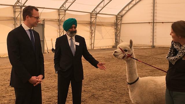 University of Calgary veterinary program expanded