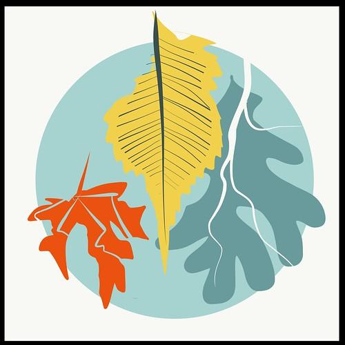 Minnesota Fall Leaves