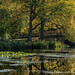 Nostell Priory IMG_0318