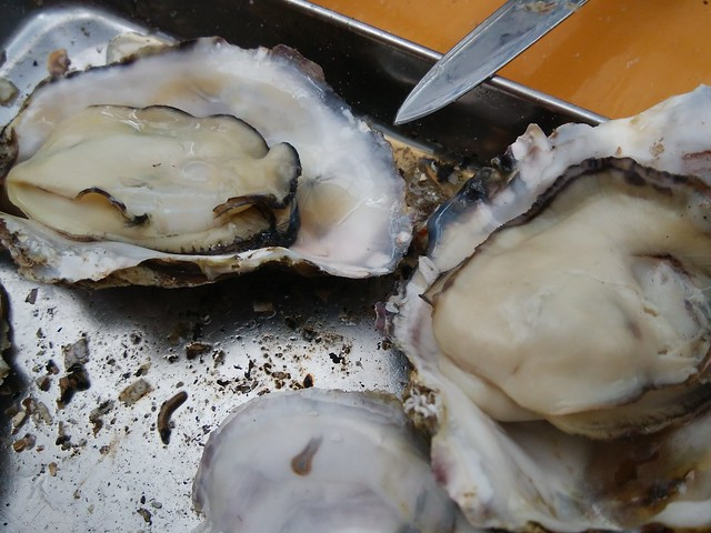 hiroshima-hatsukaichi-shimada-suisan-oyster-hut-grilled-oysters-03