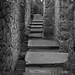 Craigmillar Castle Edinburgh A Symphony in Stone (29)