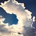 <p><a href=&quot;http://www.flickr.com/people/thomashawk/&quot;>Thomas Hawk</a> posted a photo:</p>&#xA;&#xA;<p><a href=&quot;http://www.flickr.com/photos/thomashawk/37017647250/&quot; title=&quot;Untitled&quot;><img src=&quot;http://farm5.staticflickr.com/4490/37017647250_6024c3157a_m.jpg&quot; width=&quot;160&quot; height=&quot;240&quot; alt=&quot;Untitled&quot; /></a></p>&#xA;&#xA;